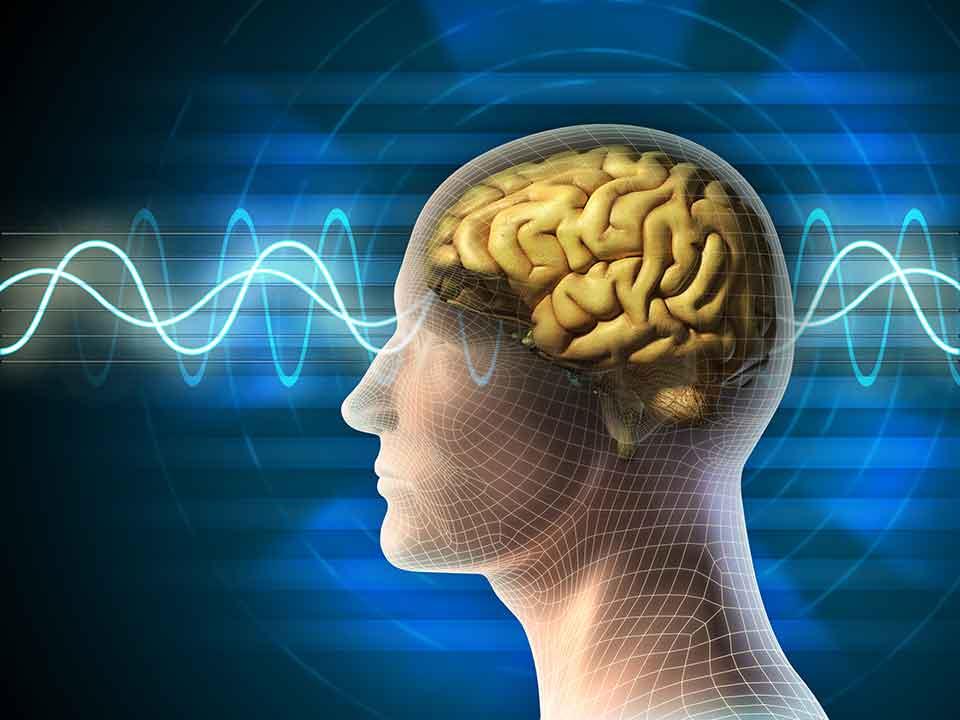 一悟術ヒーリングを受けた人の脳波