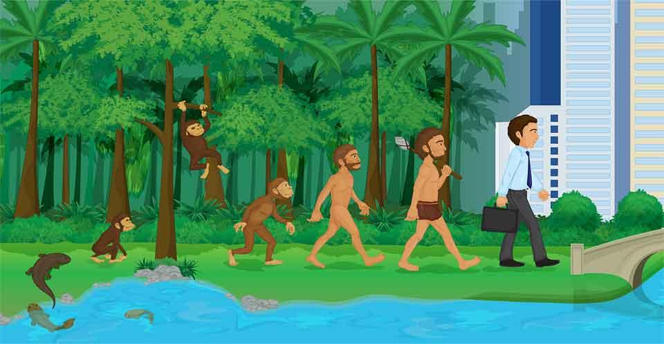 進化論という概念