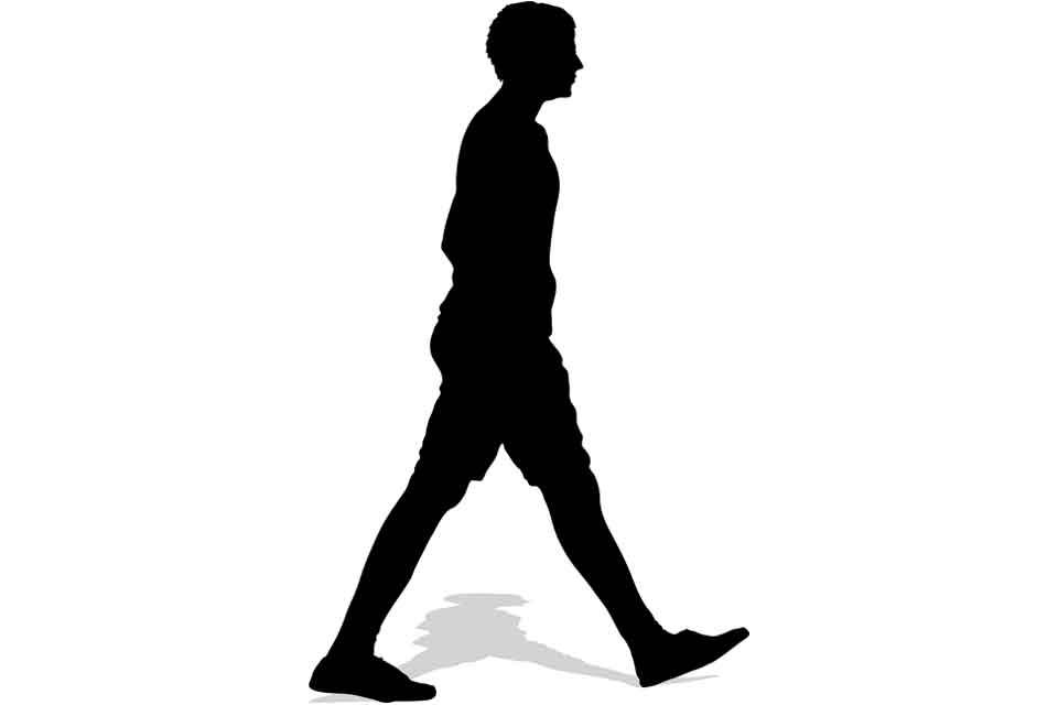 直立二足歩行