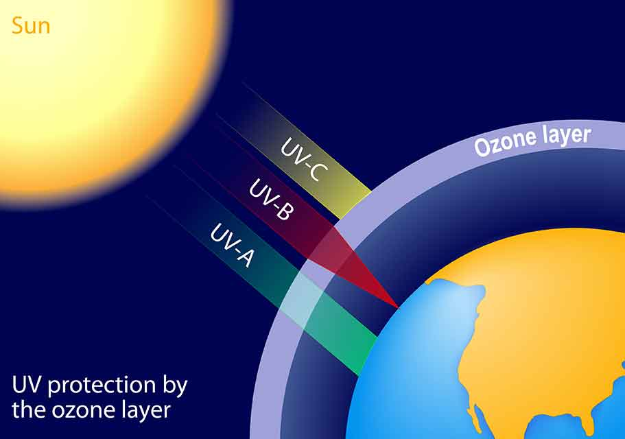 原生代における生命進化の要因―オゾン層の出現―
