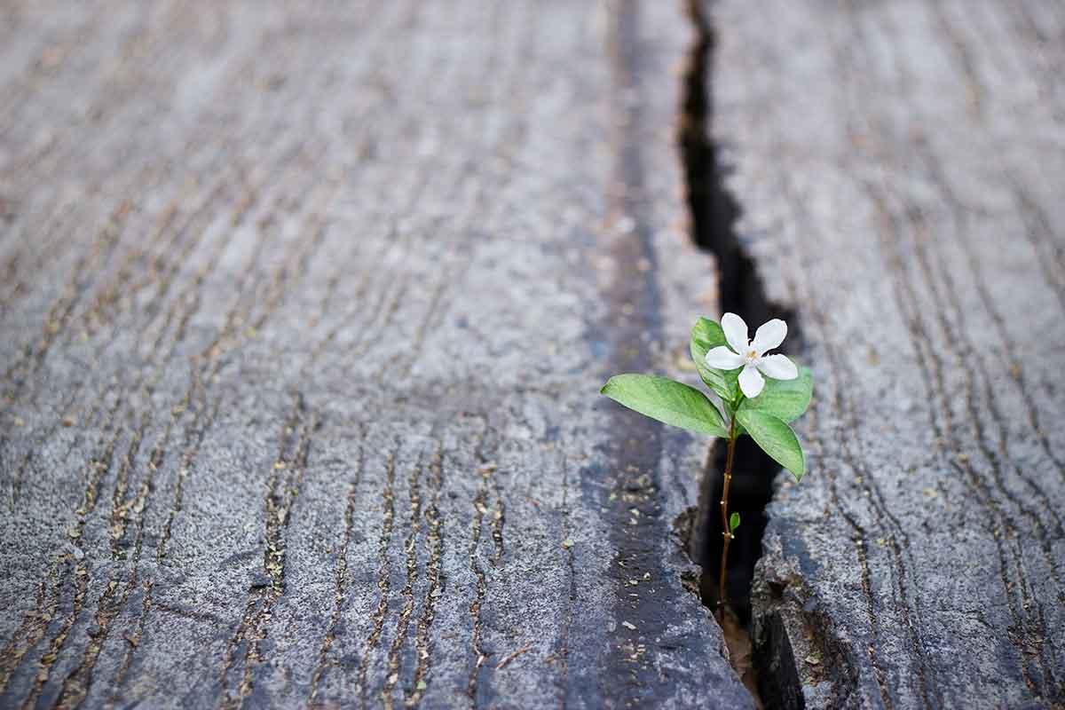 共依存を卒業する5つのステップ