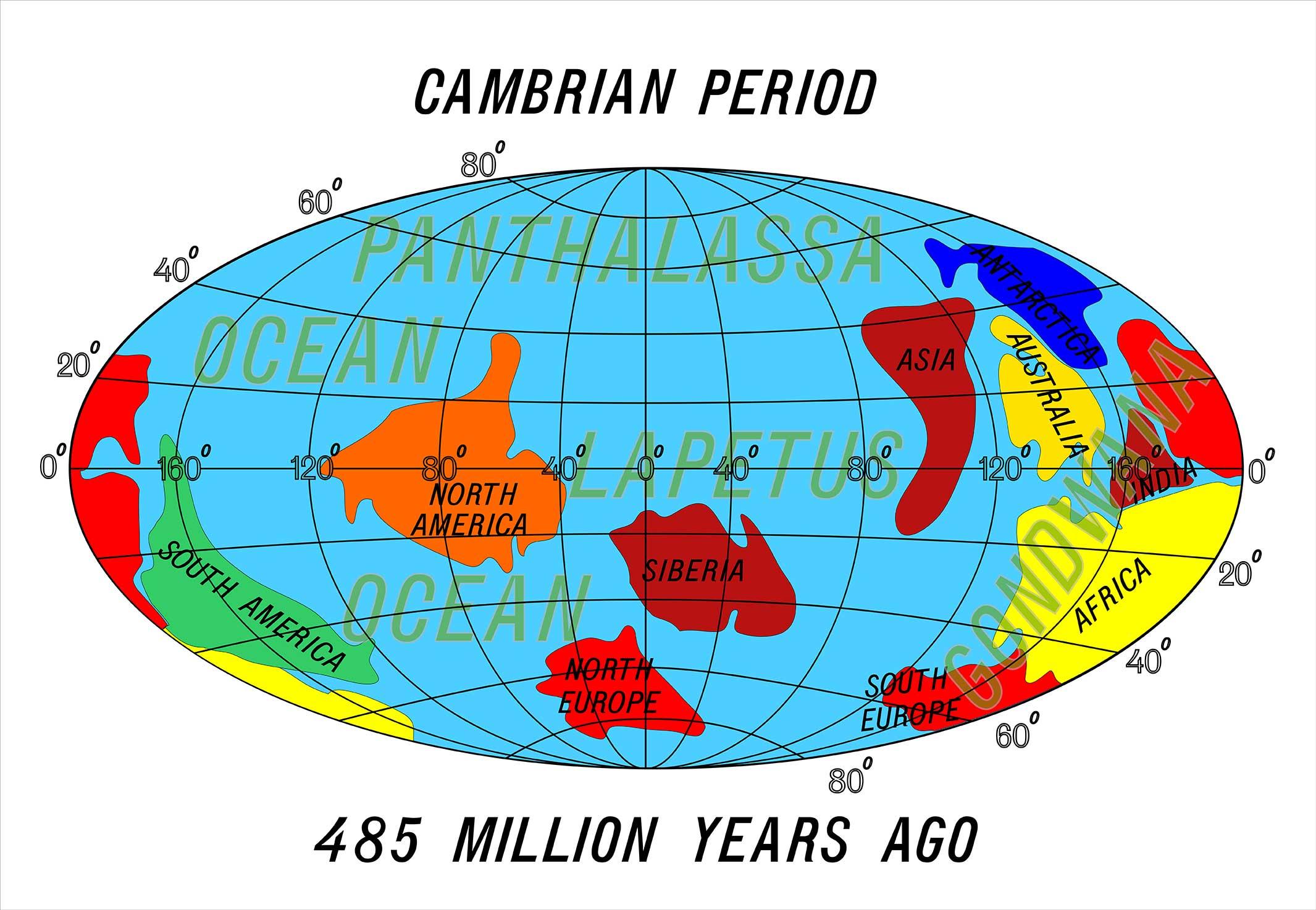 カンブリア紀とは
